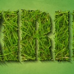 grass_text_effect